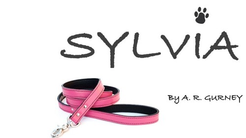 Graphic for Sylvia